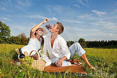 summer-picnic-happy-couple-meadow-10840942-1
